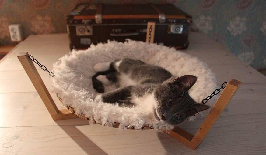 diy fabriquez un hamac tout doux pour votre chat autre. Black Bedroom Furniture Sets. Home Design Ideas