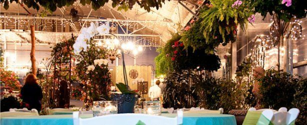 Are You Engaged And Looking For The Perfect Wedding Venue Fall In Love All Over 10 TopCape