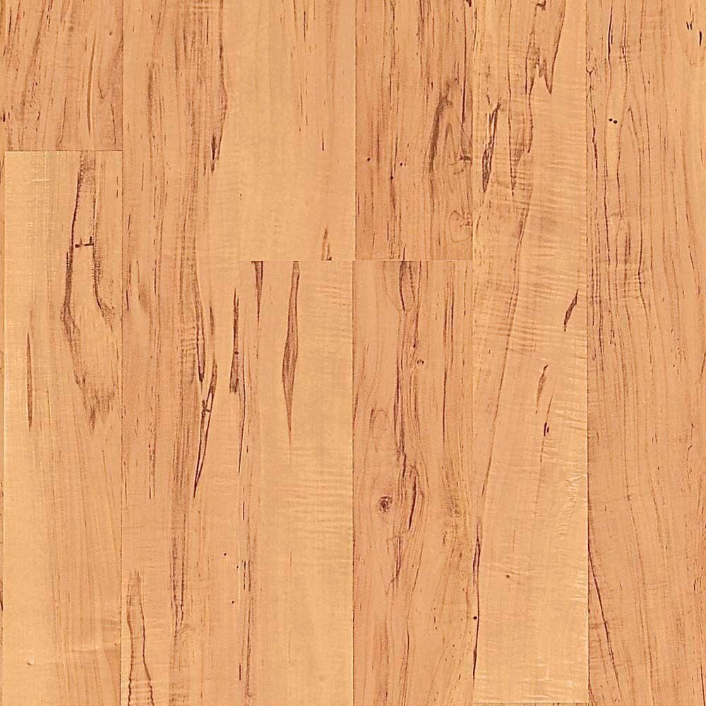 Presto Applewood Laminate Flooring - 5 in. x 7 in. Take Home Sample ...