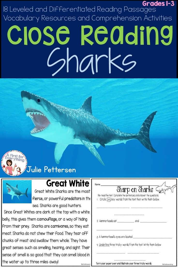 Close Reading Sharks Close Reading Reading Activities Teaching Ell Students [ 1104 x 736 Pixel ]