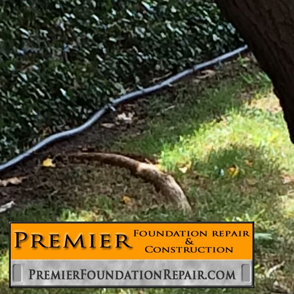 Roots Are Too Close To The Foundation Soaker Hose Is Not Installed Properly Both Can Be Fixed Before The Foundatio With Images Foundation Repair Foundation Soaker Hose