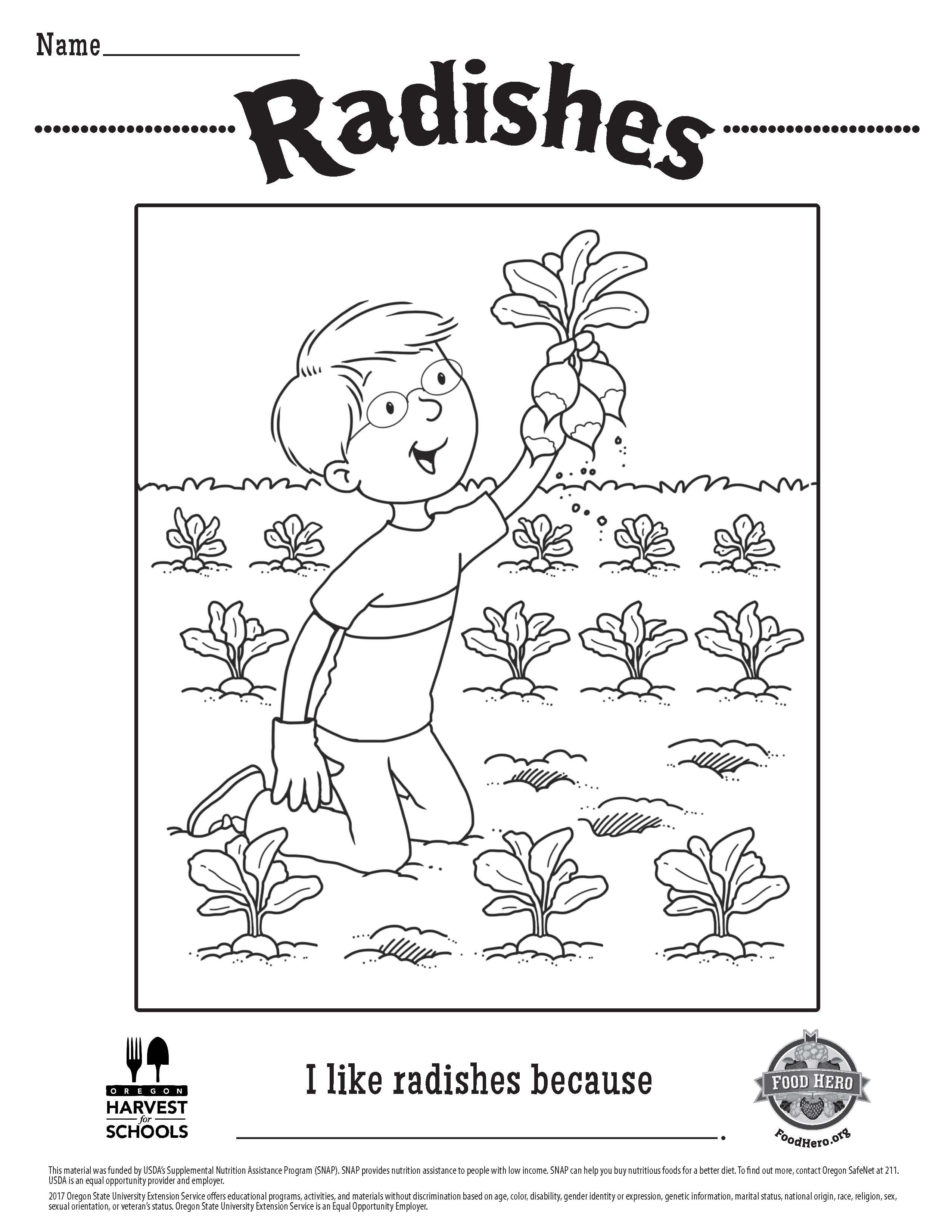 Radishes Food Hero Free Printable Childrens Coloring Sheet