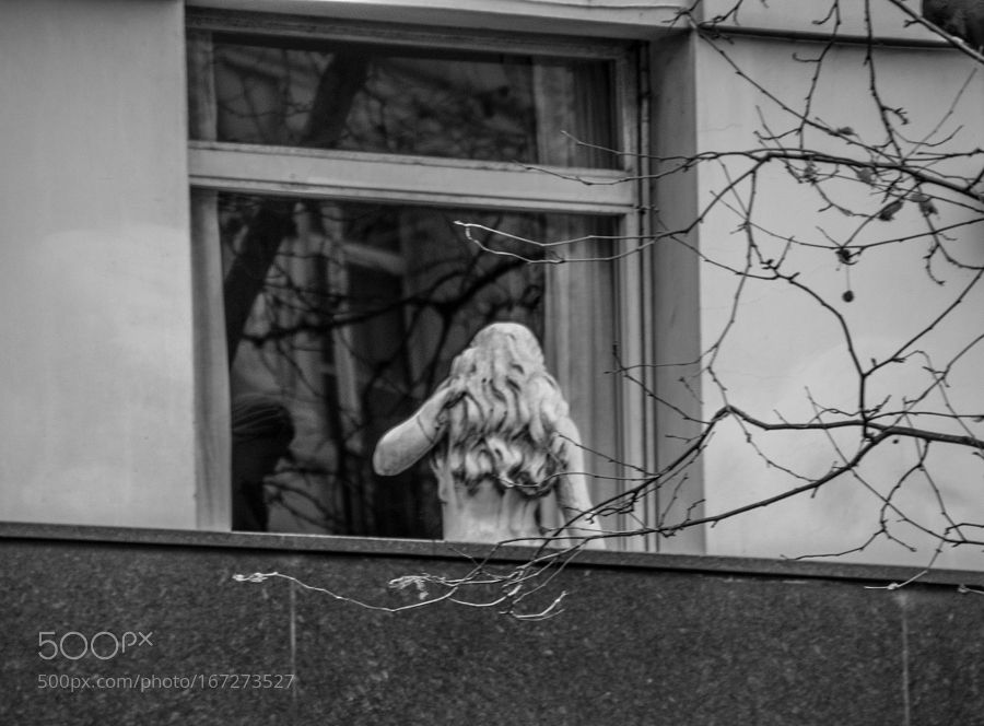 She is so cold by bkapszuk