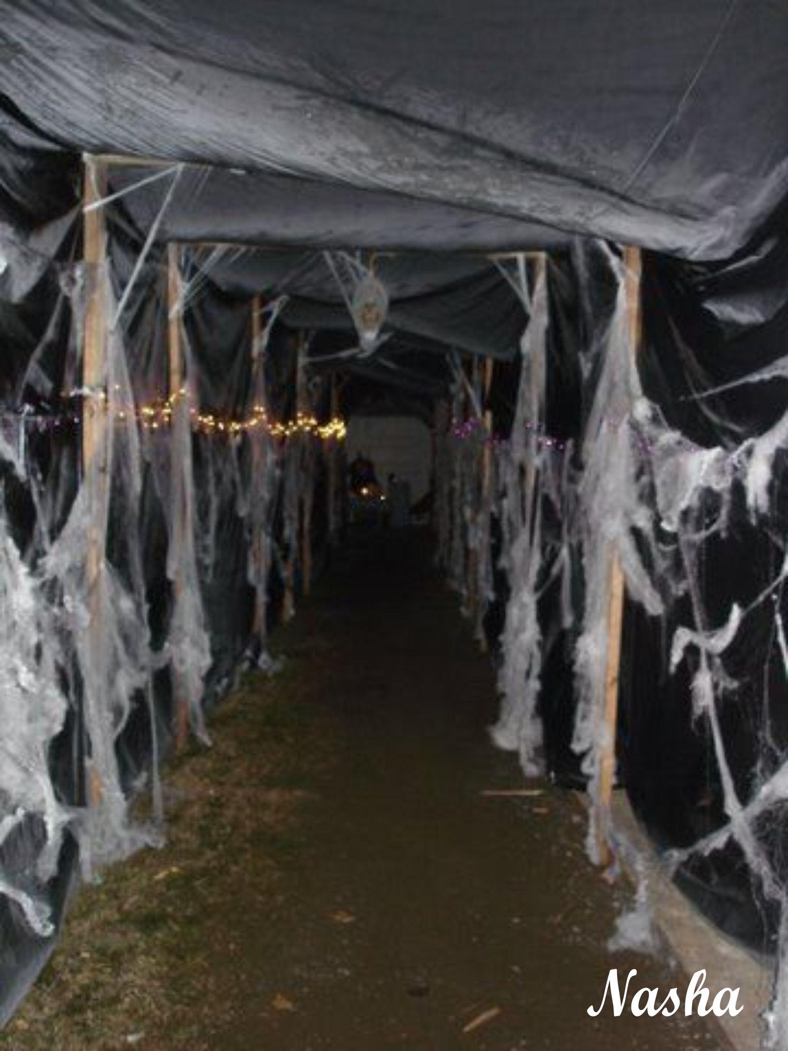 Entrada hacia el toldo para la fiesta Halloween | Halloween ...
