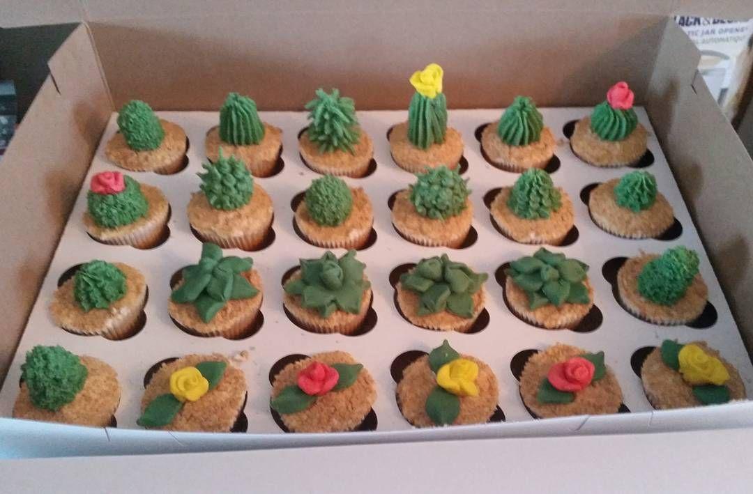 cupcake recipes for bridal shower%0A Cactus cupcakes for a Mexican themed bridal shower   cactus  cacti  cupcakes  u