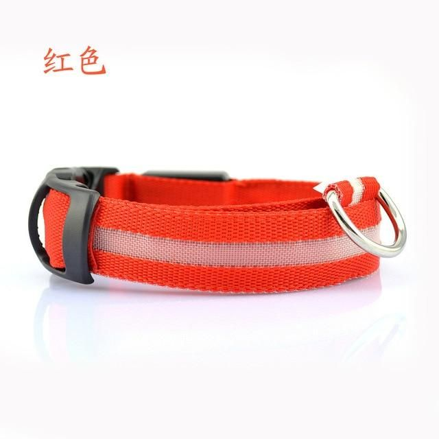 Photo of Nylon LED Pet dog Collar,Night Safety Flashing Glow In The Dark Leash Fluorescent Collars