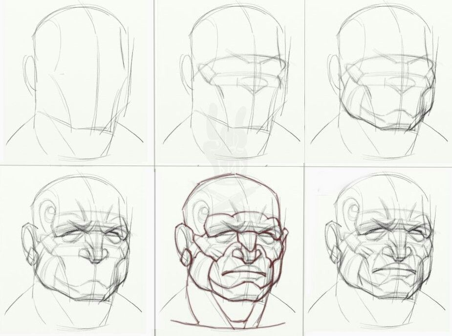 Pin By Andrew On Tips Pinterest Anatomy And Sketches