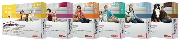 Comfortis Is A Chewable Tablet That Protects Your Dog Or Cat From Fleas For One Month Currently In Stock At Abri Animal Hospital Oral Tablets Flea Prevention