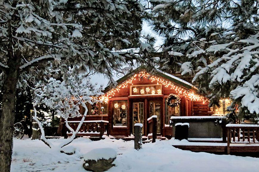 Iarna, o altă decoraţie naturală ce ne... | Life.ro