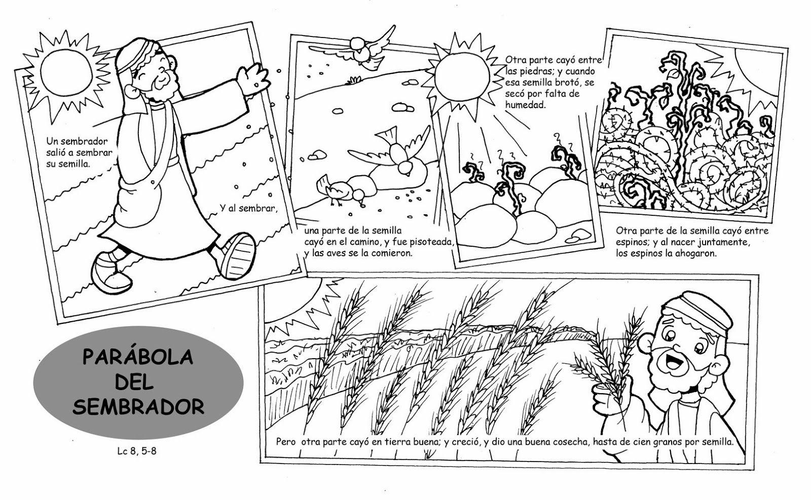 Dibujos Para Catequesis Febrero 2014 Parabola Del Sembrador Historias De La Biblia Para Ninos Catequesis