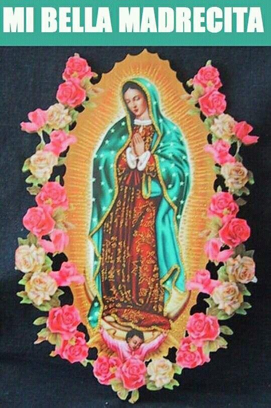 Virgencita ruega por nosotros