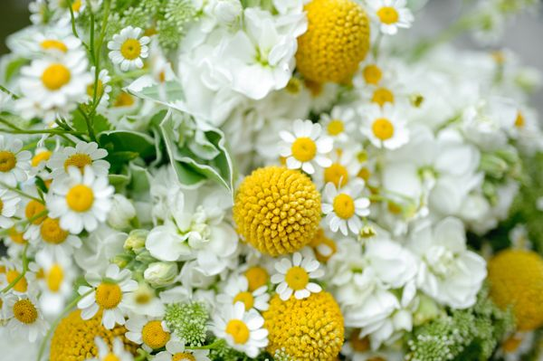 Flowers yellow green yellow warmth pinterest green flowers bouquet friday yellow white and green flowers loverly the ultimate wedding planning checklist mightylinksfo