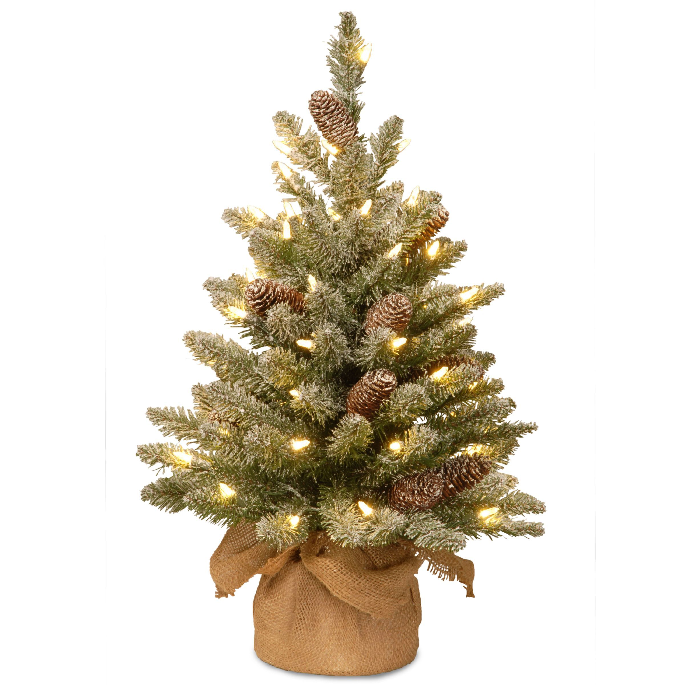 snowy concolor 2 fir tree with battery operated led lights