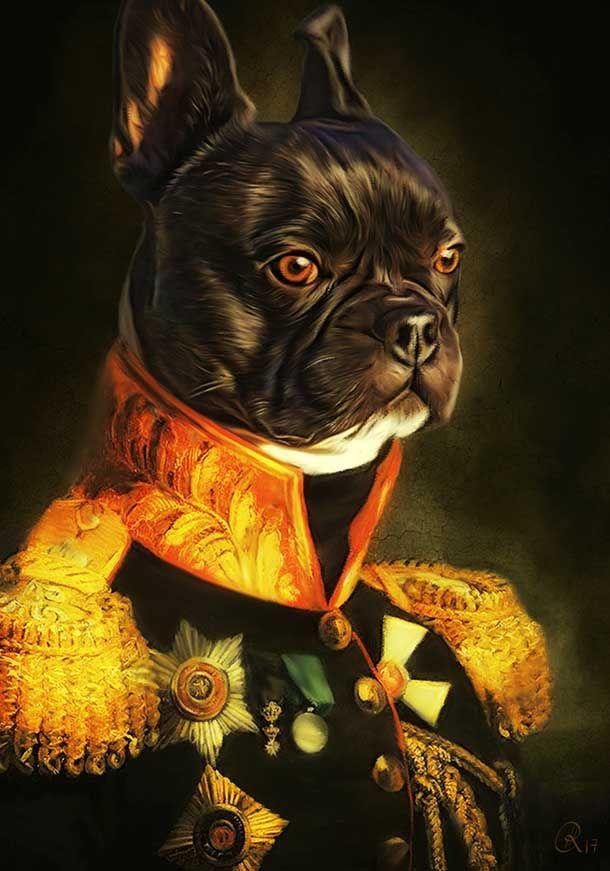 Hundeportraits - Hunde in Kleidung, Hunde im Anzug, Hund in Uniform ...
