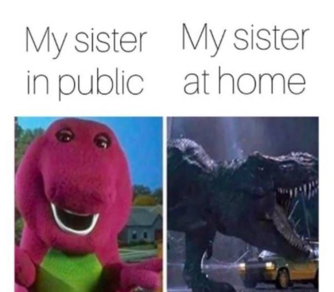 37 Sibling Memes That Prove They Can be So Annoying. - Gallery