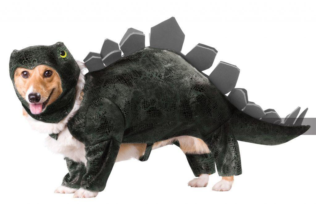 Stegosaurus Dog Costume Pet Halloween Costumes Dog Halloween