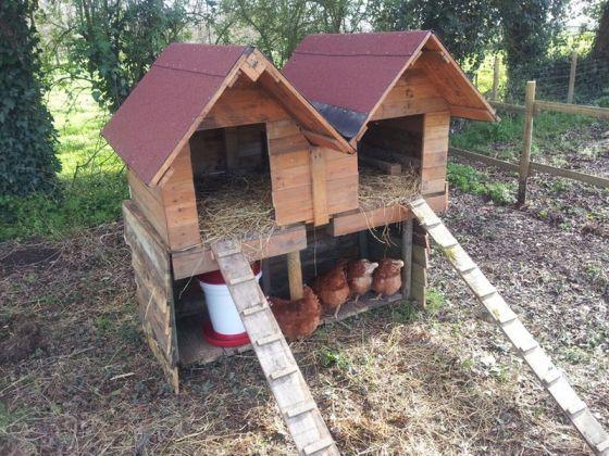 Fabriquer Un Poulailler Avec Des Palettes De Recuperation Fabriquer Un Poulailler Poulailler Palette Et Poulailler