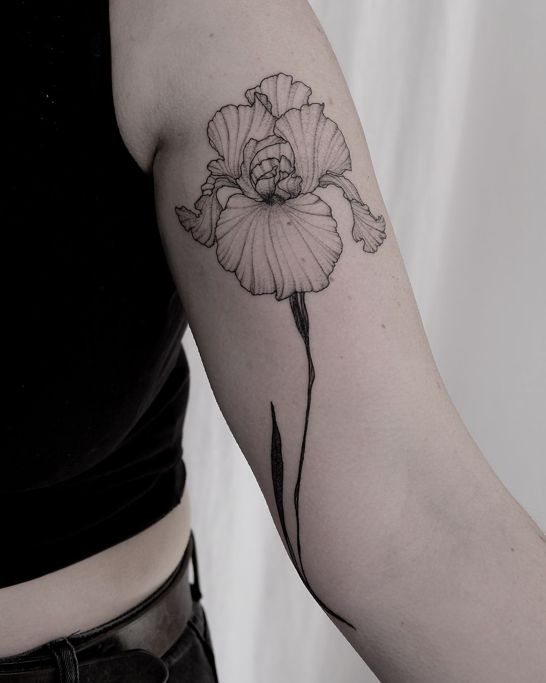 Tania Vaiana Iris Tattoo Iris Flower Tattoo Unique Tattoos