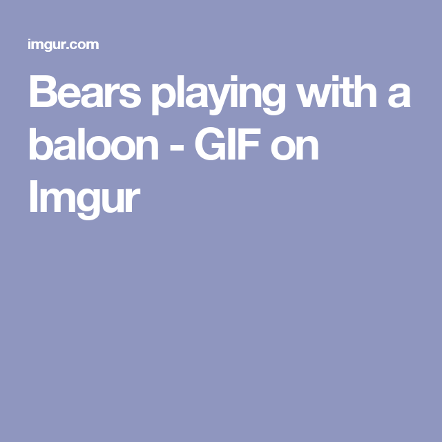 Bears playing with a baloon - GIF on Imgur