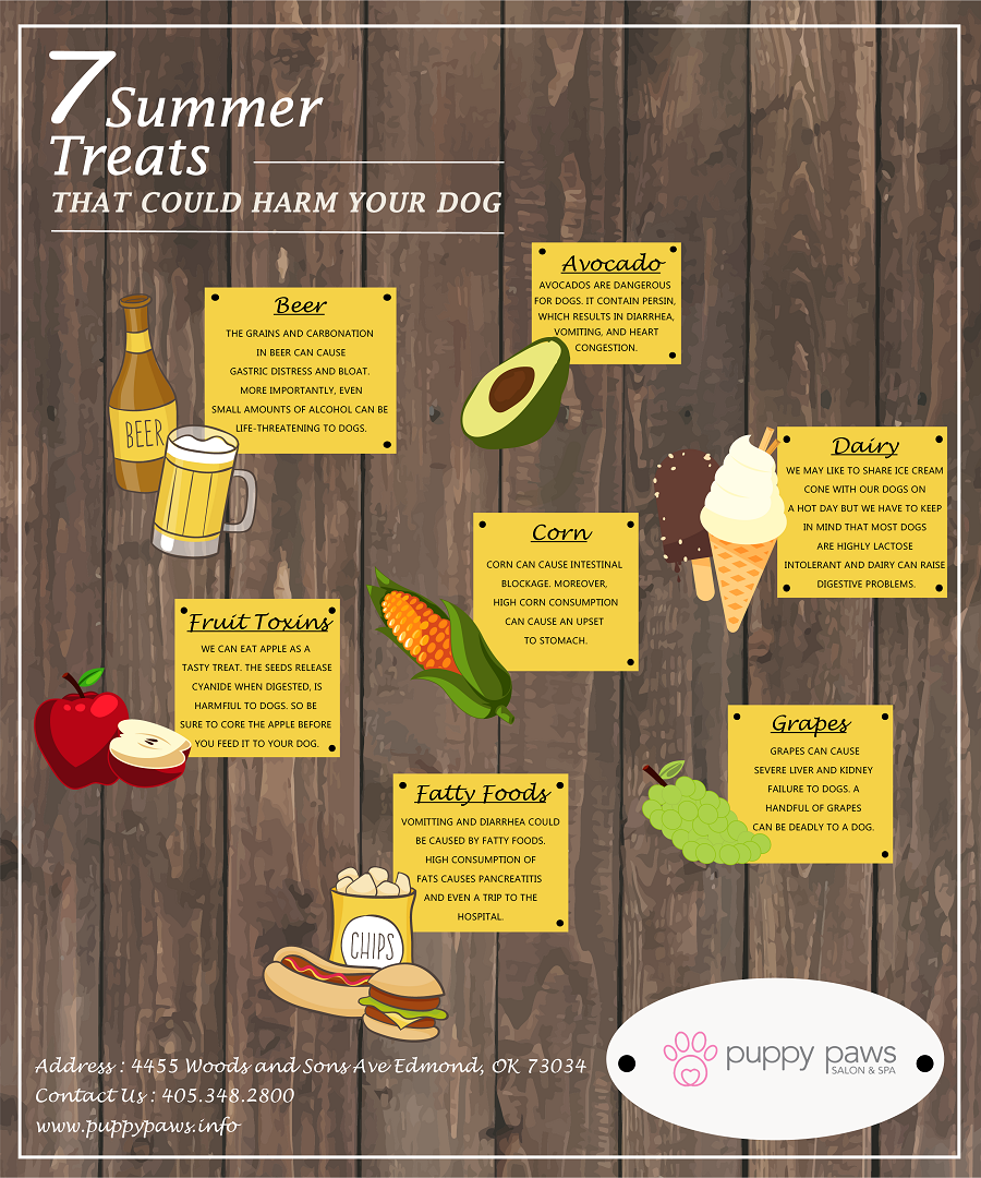 Pin By Puppy Paws Hotel And Spa On Infographic Summer Treats Treats Infographic