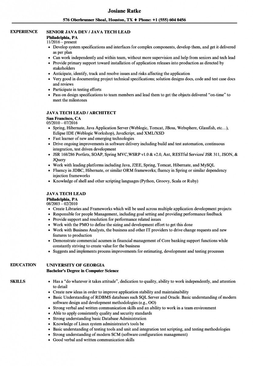 14 Java Resume Pattern in 2020 Project manager resume