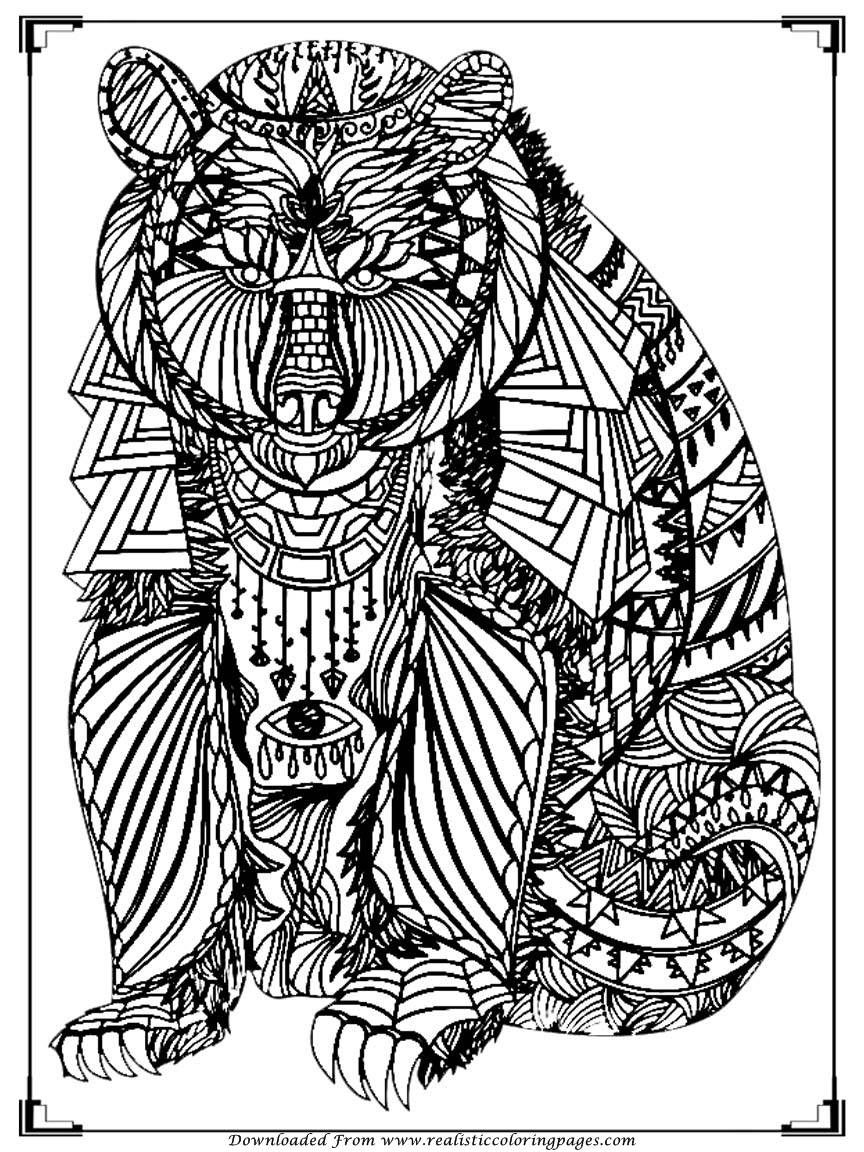 Bear Coloring Pages For Adult Printable Realistic Coloring