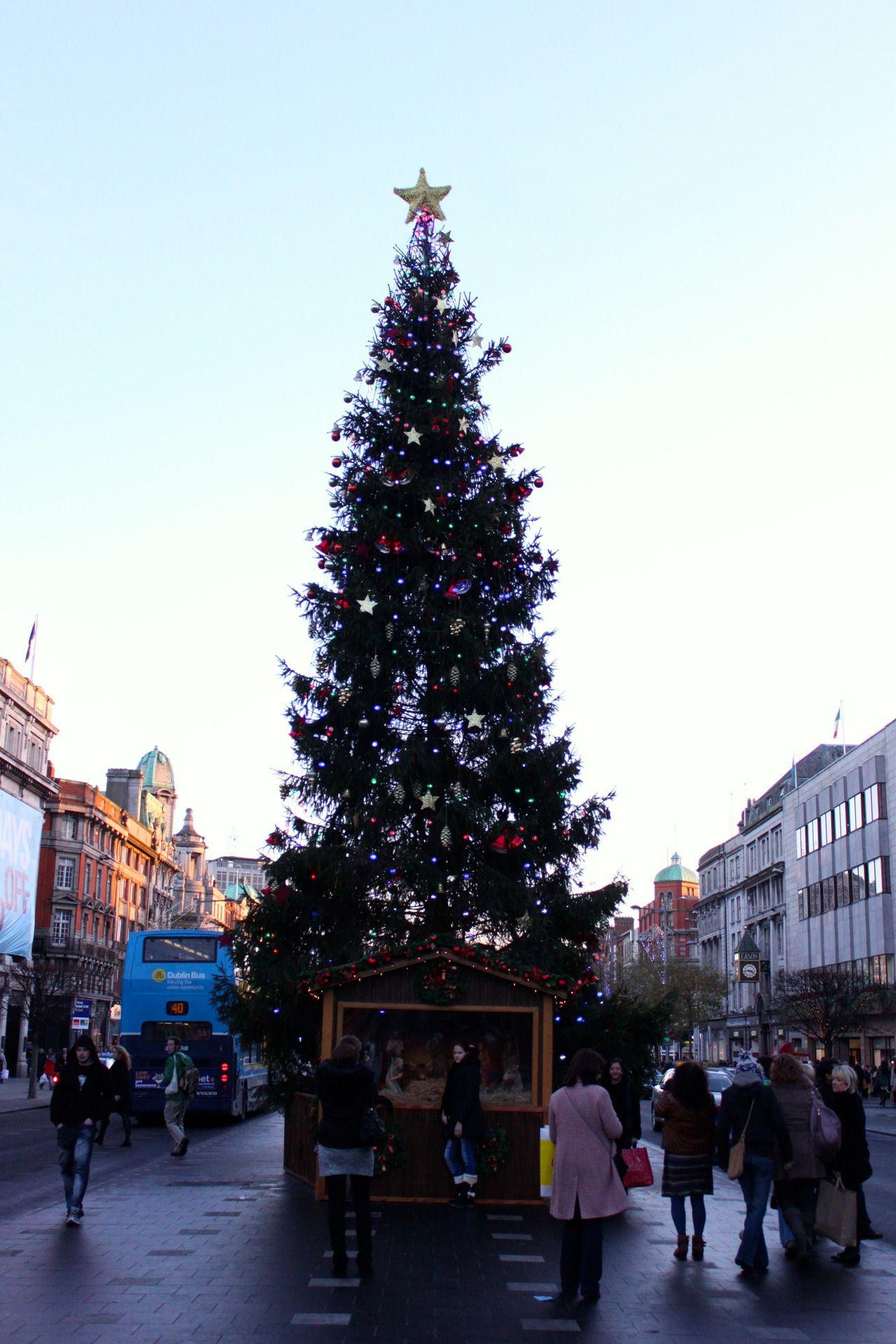 O'Connell Street, Christmas Tree, Dublin, Ireland