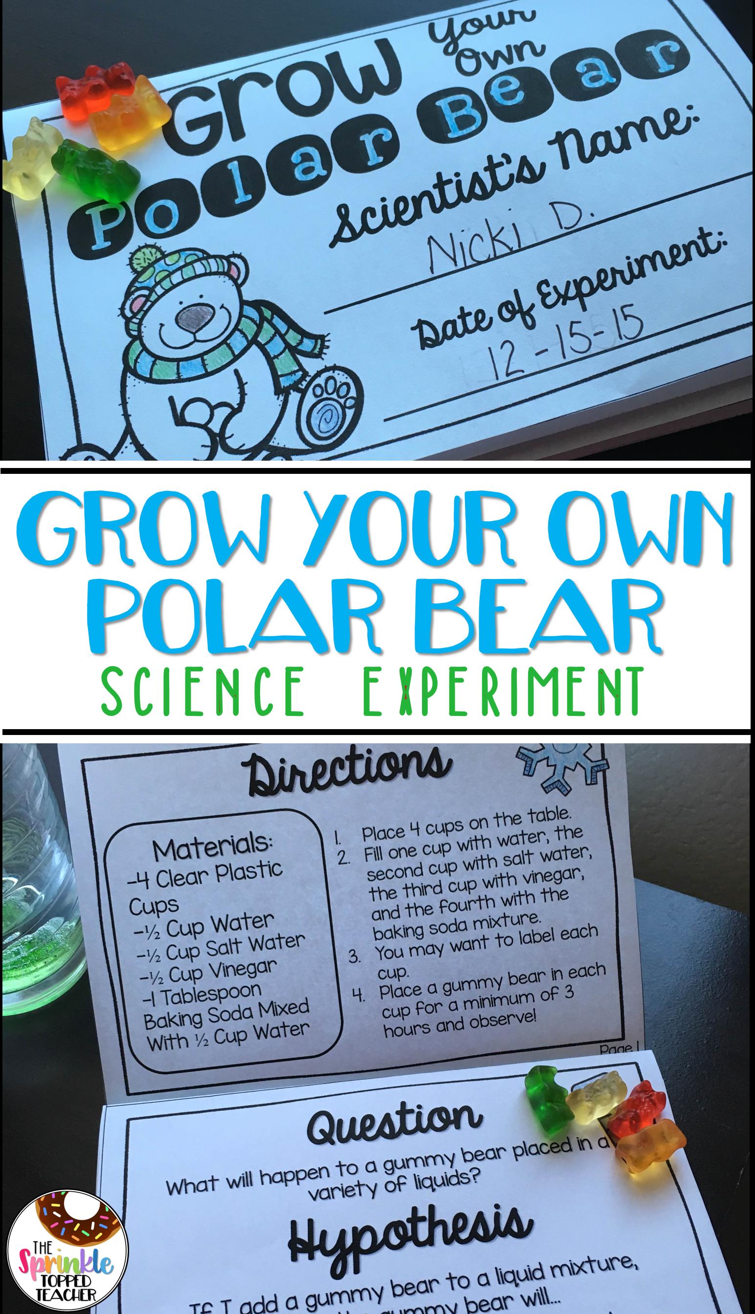 Grow Your Own Polar Bear Science Experiment Using