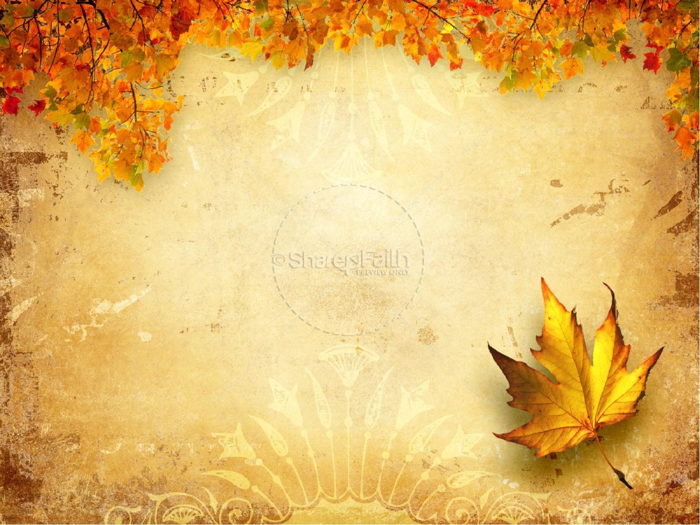 Images Of Free Powerpoint Template Fall Harvest Zeept With Free Fall Powerpoin Powerpoint Background Free Background Powerpoint Powerpoint Background Templates