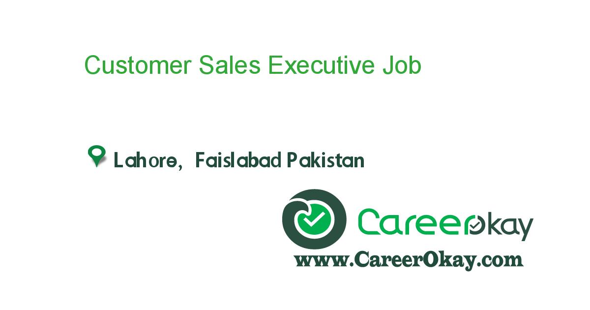 Customer Sales Executive Https Www Careerokay Com Job Job Listings Customer Sales Executive Naqsha 92746 Executive Jobs Job Jobs In Pakistan