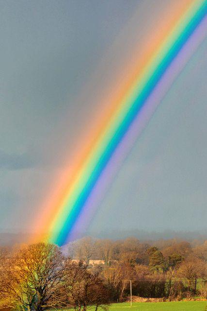 Rainbow 03400214. | par johndugganfoto