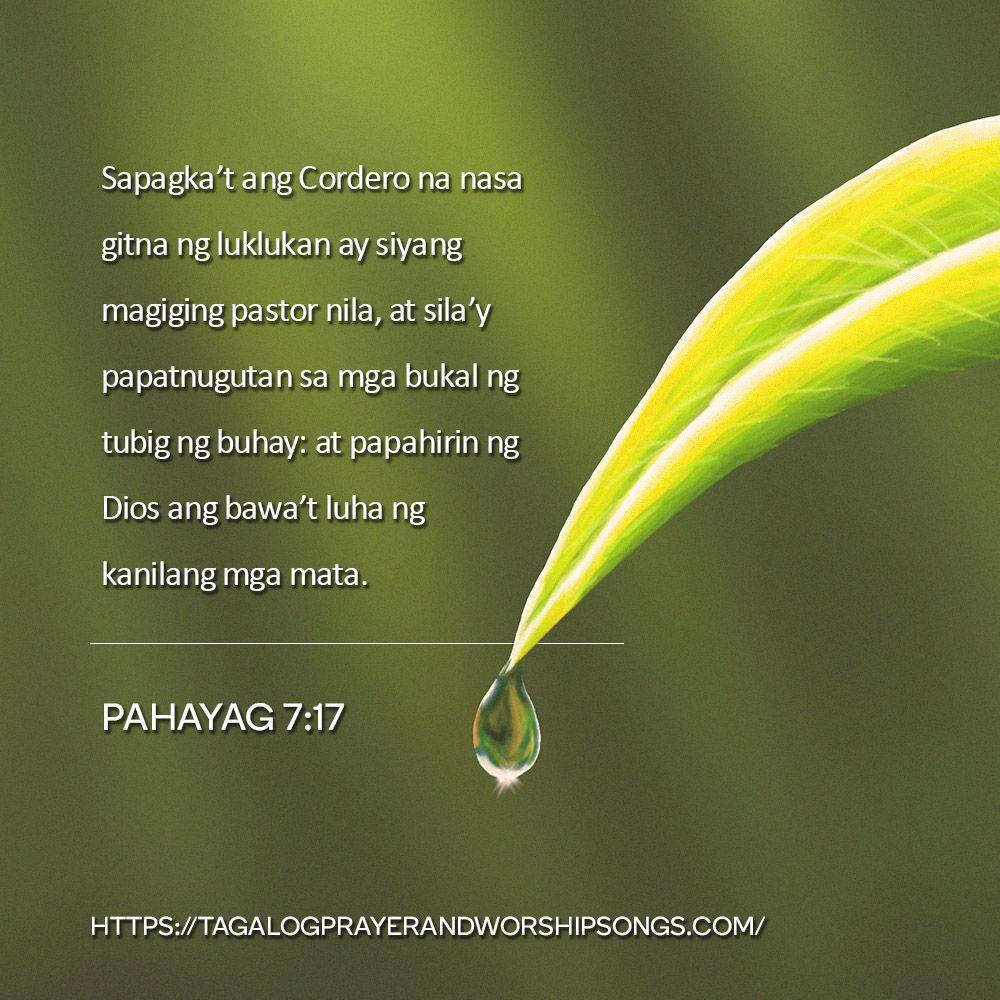 Tagalog Bible Application Free Download