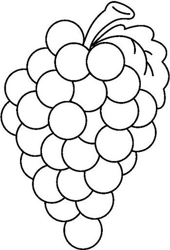 Color Grapes Bw Jpg 349 512 Pixels Fruit Coloring Pages Grape