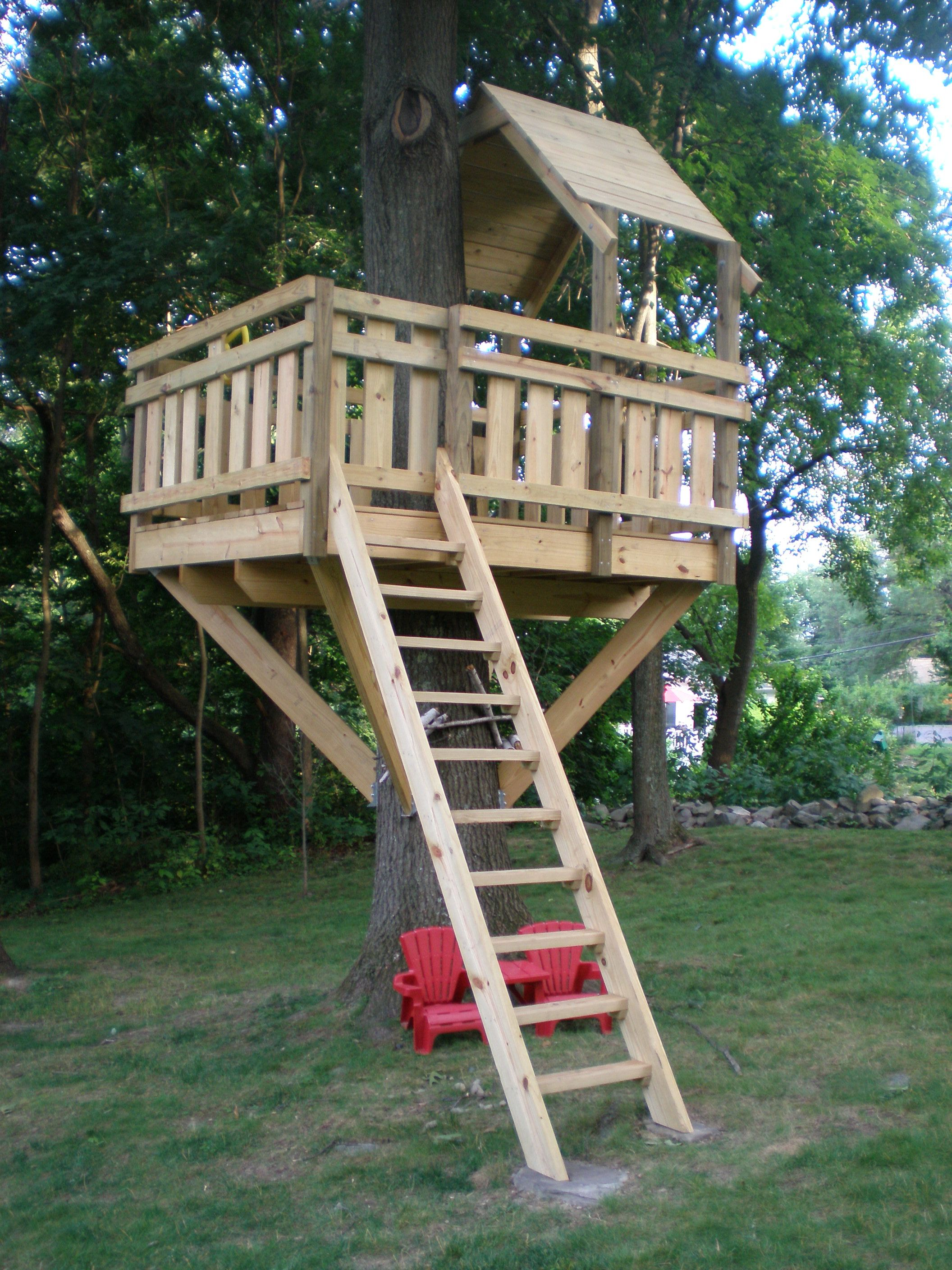 Tree fort ladder gate roof finale kids tree forts for Small tree house