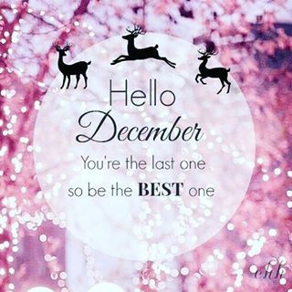 Hey December💐Please be nice & kind, be supporting ...