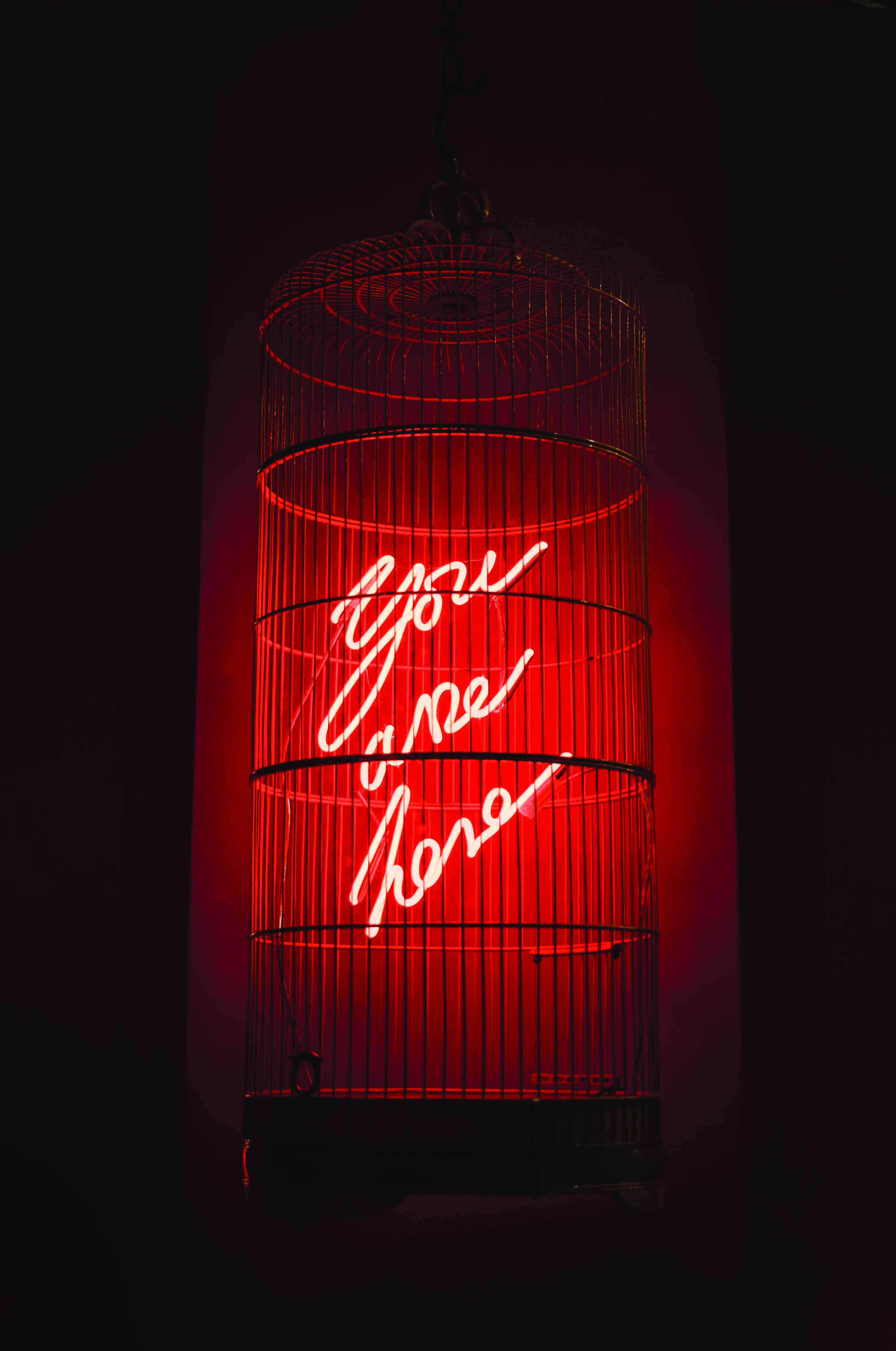 Image result for olivia steele (With images) Neon