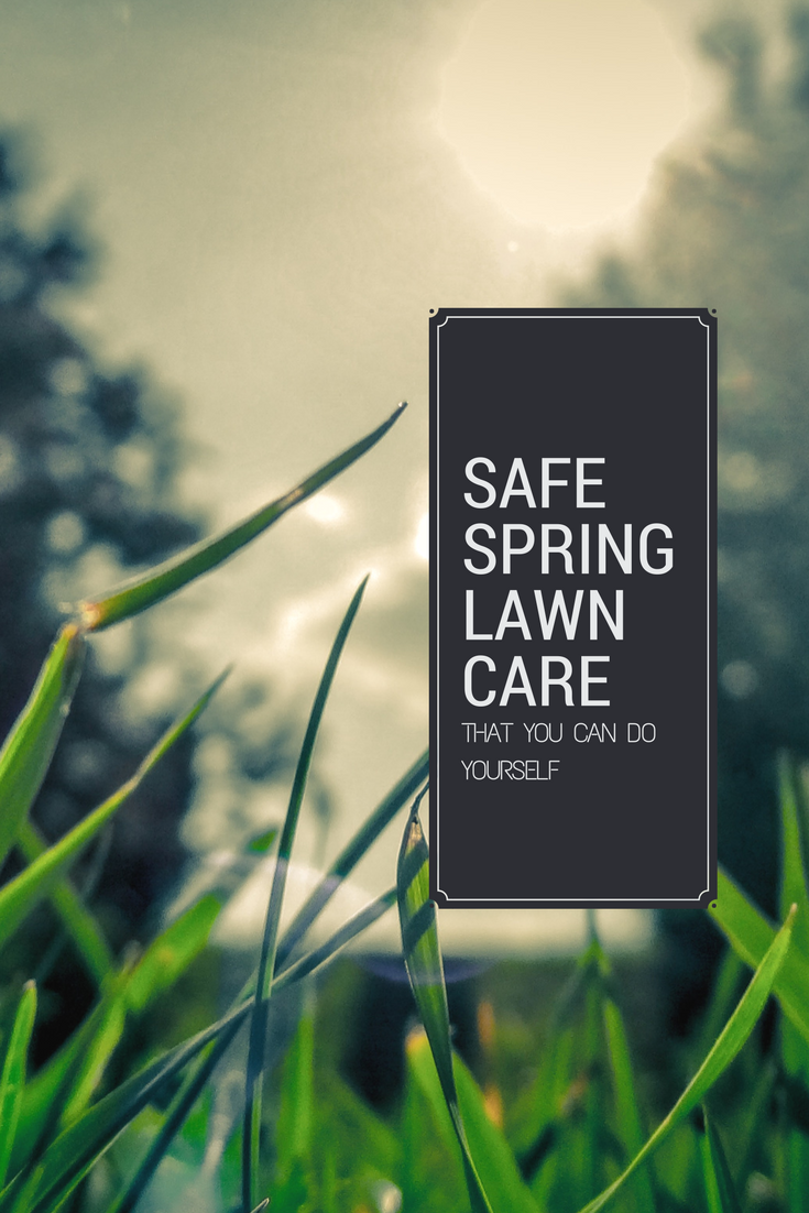 Learn the right products for organic lawn care that you can do learn the right products for organic lawn care that you can do yourself stop solutioingenieria Gallery