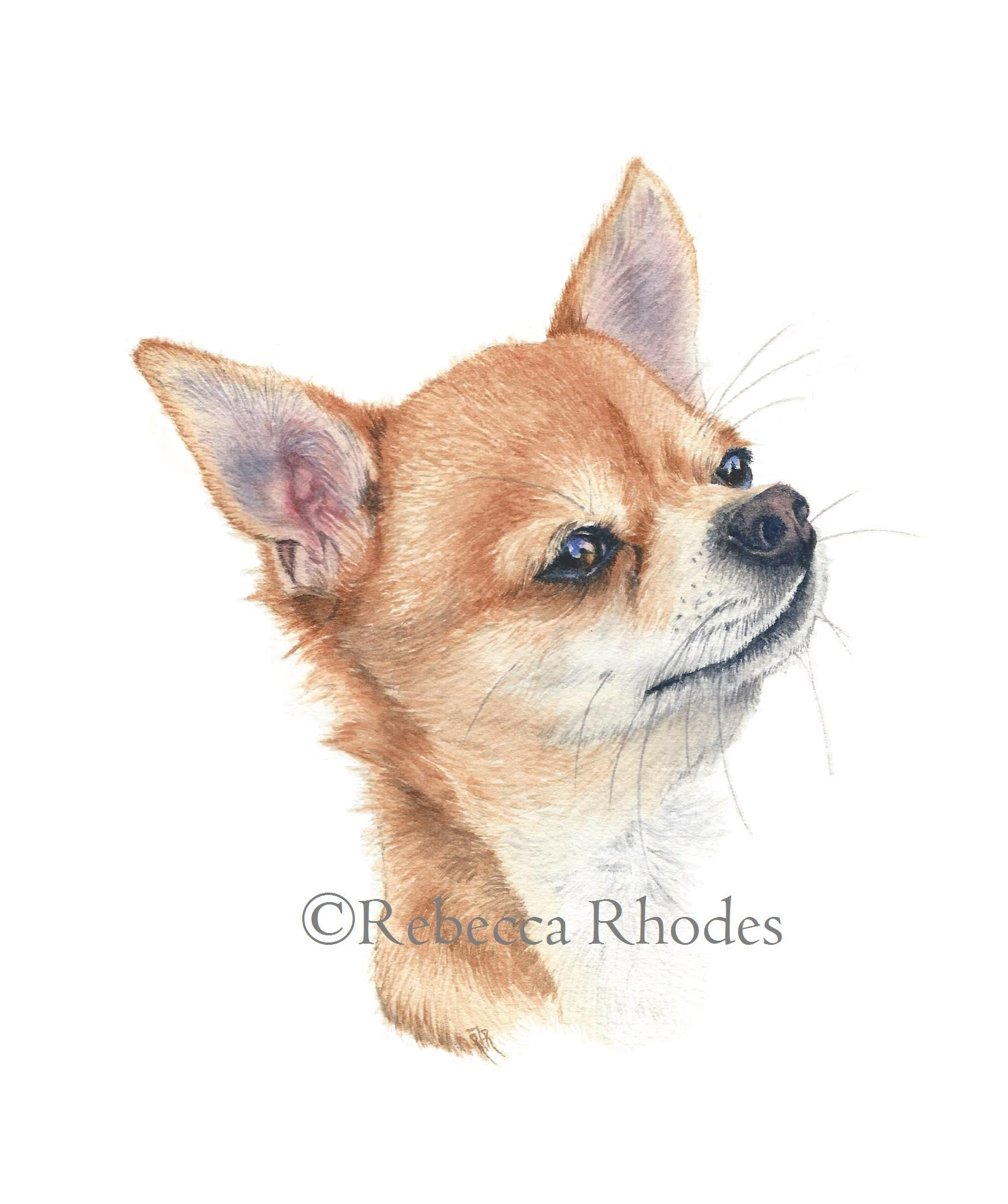 Watercolor Painting Tutorial Chihuahua Dog Watercolor Dog