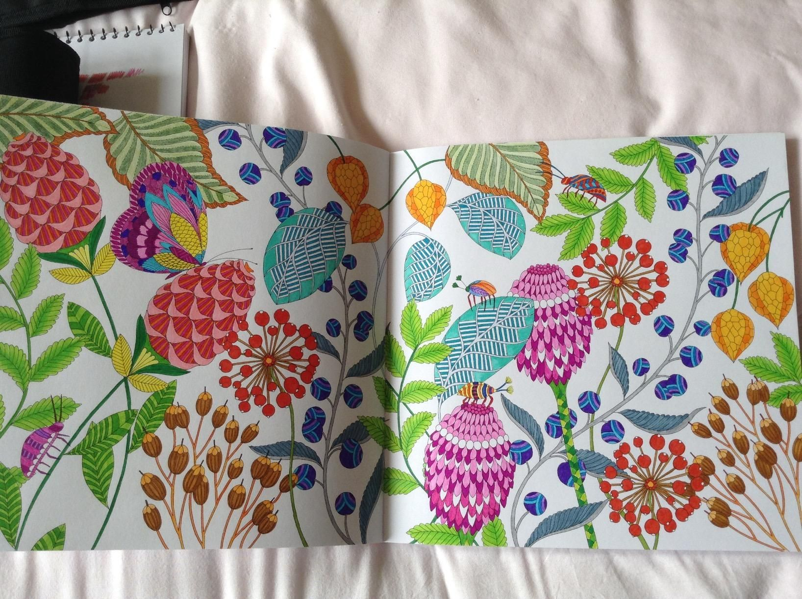 Millie Marottas Tropical Wonderland A Colouring Book Adventure Looks Great