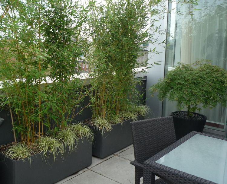 Bamboo containers for a patio screen and under for Privacy wall planter