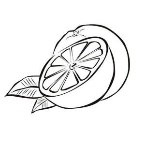 fruits and vegetables slice of fresh orange fruits coloring page - Slice Watermelon Coloring Page
