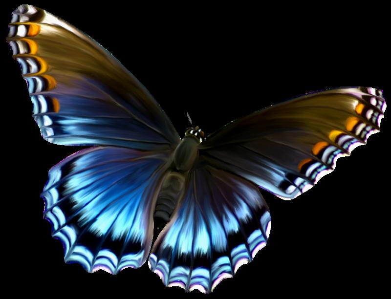 Brown And Blue Transparent Butterfly Clipart By Zwyklaania On Butterfly Pictures Butterfly Clip Art Brown Butterflies