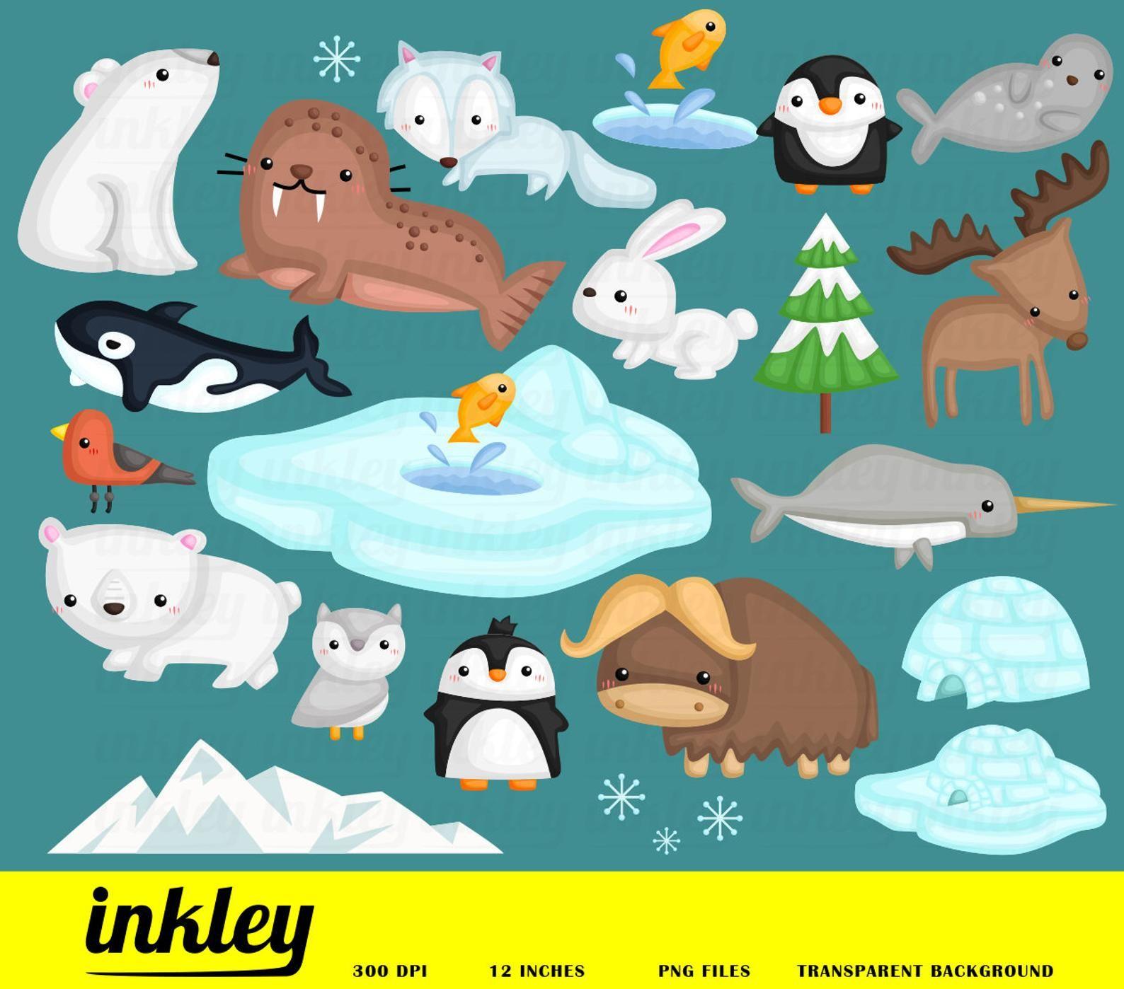 Cute Arctic Animal Clipart North Pole Animal Clip Art Snow And Winter Free Svg On Request Animales Del Artico Cajas De Tarjetas De Regalo Manualidades