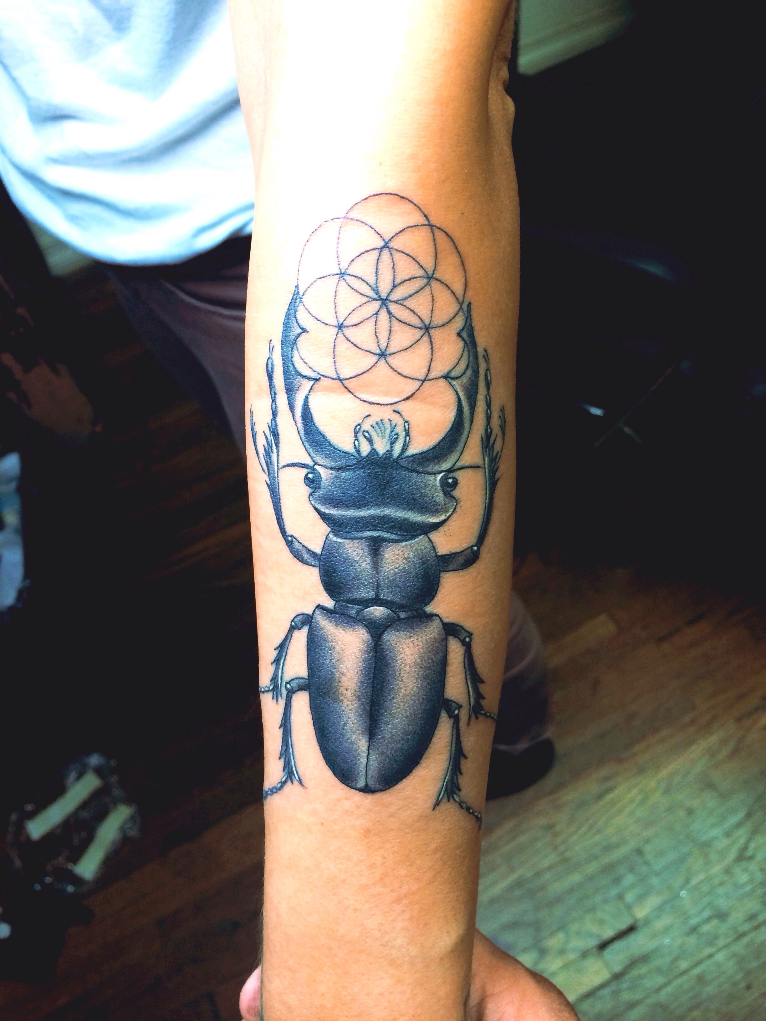 This is an image of Exceptional Sacred Geometry Beetle Tattoo Drawing