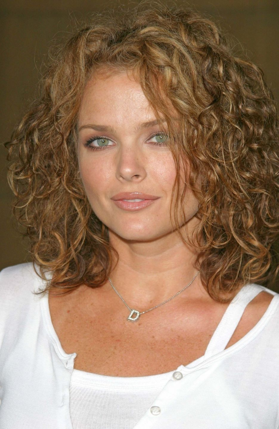 Dina Meyer Nude Photos 79