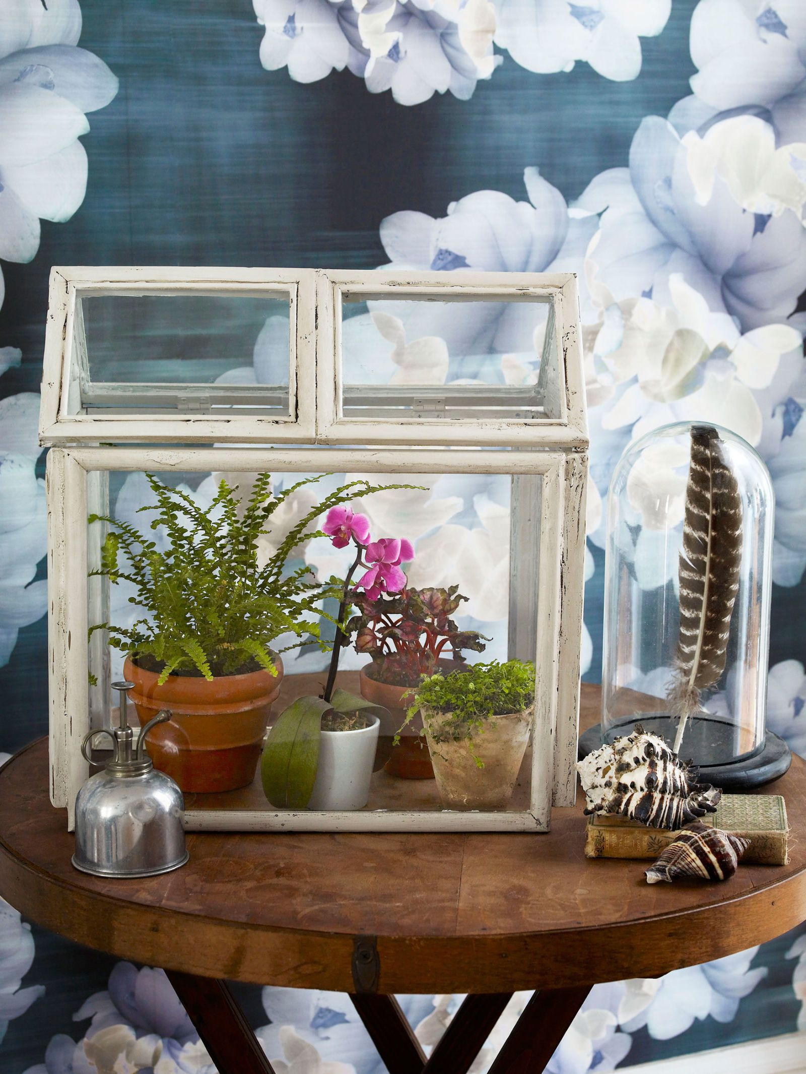How to Make a DIY Terrarium Using Old Picture Frames | gardening ...