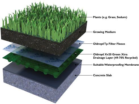 one roof, two roofs, green roofs, blue roofs | green roofs and