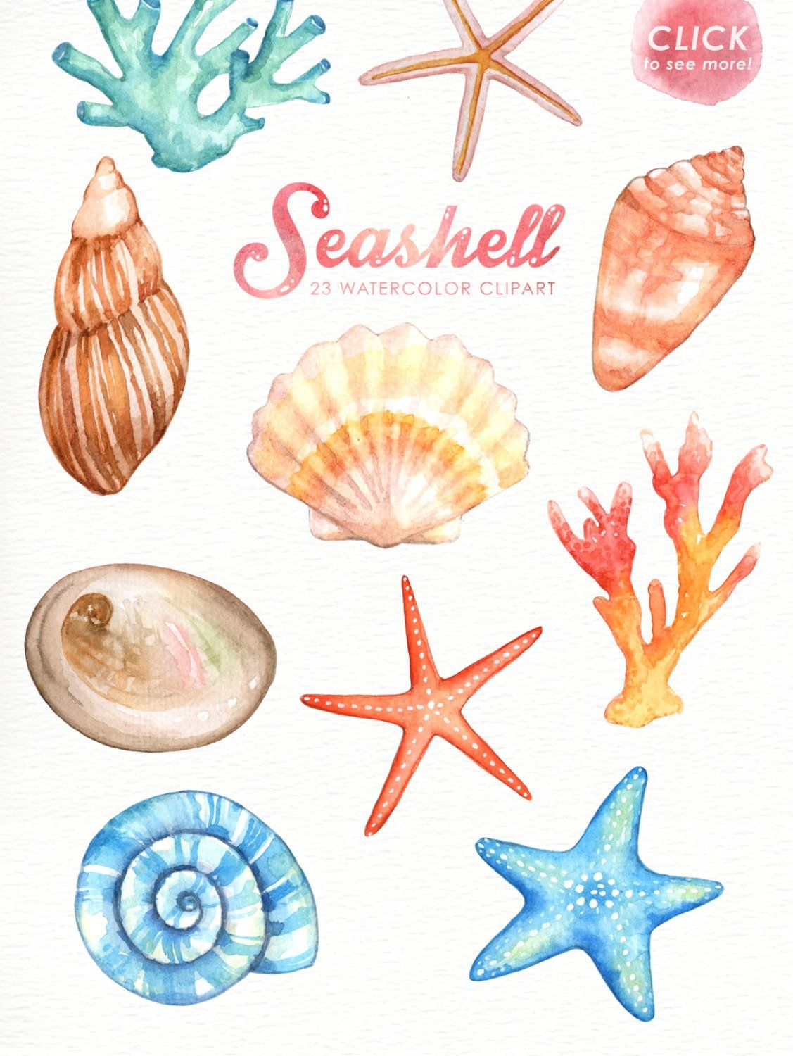 Seashells Watercolor Clipart Nautical Watercolor Clip Art Ocean Shell Starfish Coral Beach Wedding Clipart Summer Clipart Invitation Nautical Watercolor Coral Watercolor Watercolor Clipart