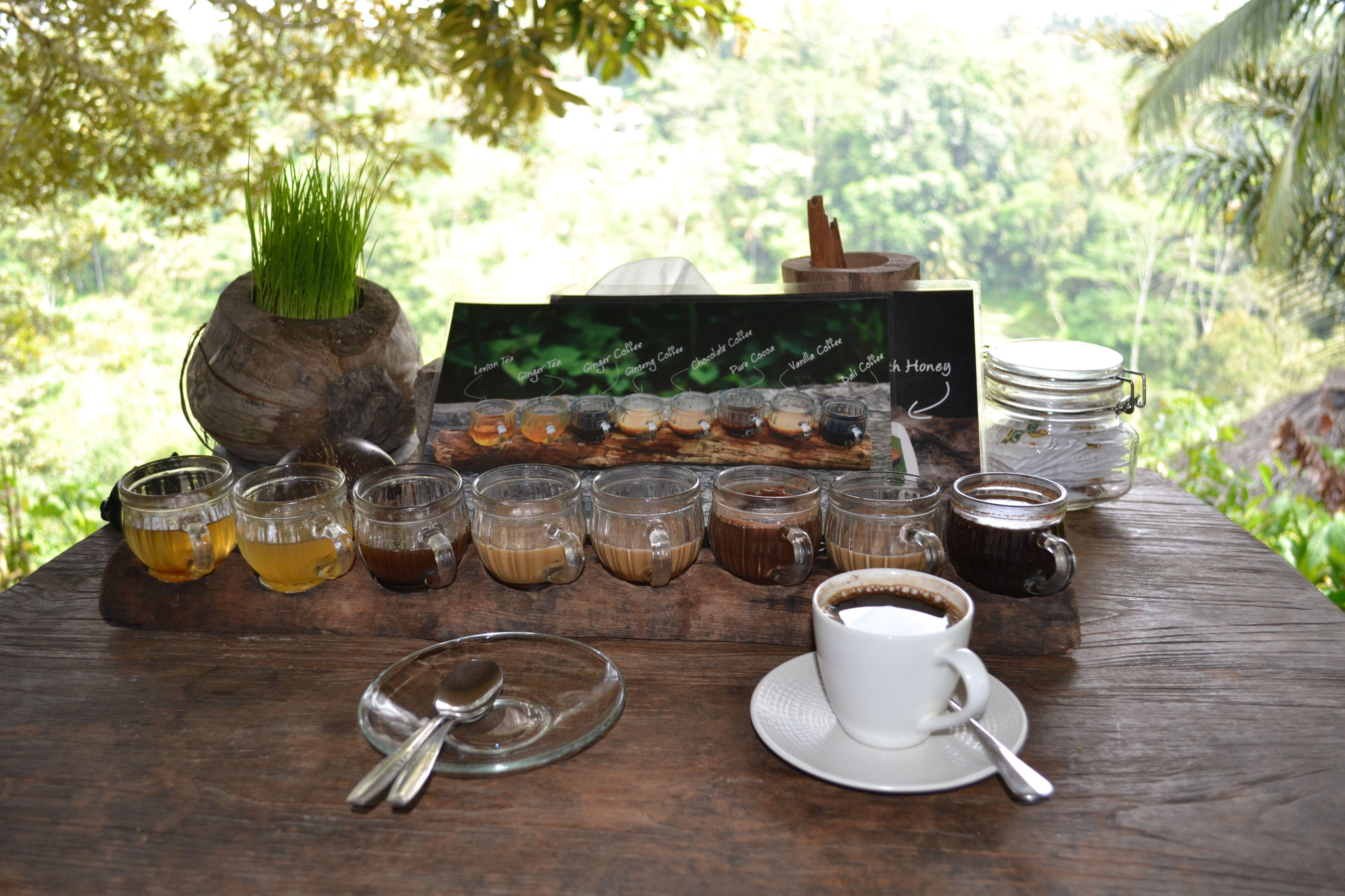 Drinking Luwak coffee in Ubud Table settings, Ubud, Drinking