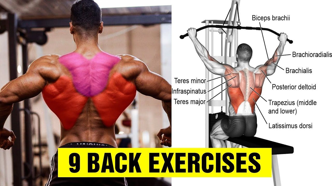 9 Exercises To Build A Big Back Gym Body Motivation Youtube In 2020 Gym Body Body Motivation Exercise